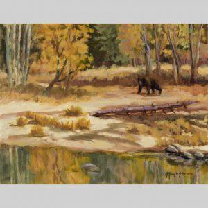 Ursa Curious, 14x18