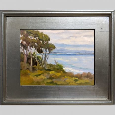 Above the Shore 9x12 3PS silver frame