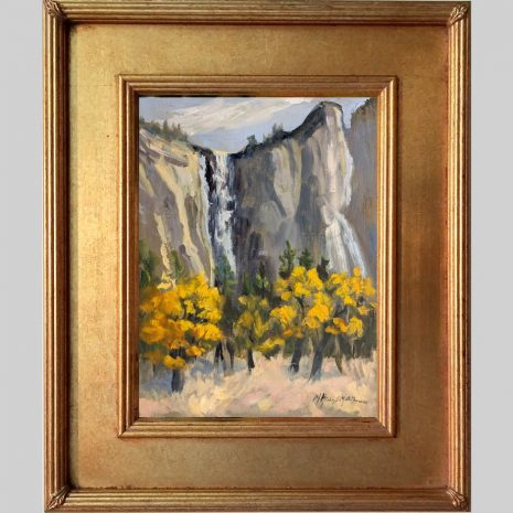 Fall Colors Yosemite 12x9 SD 629G gold frame