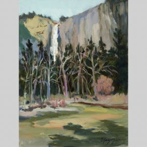 Falls from the River 12x9