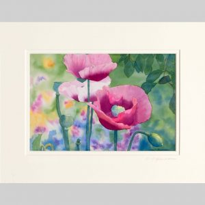 Poppies at Giverny, 14x21, double matted