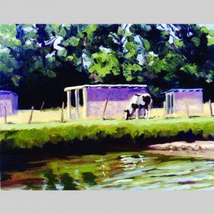 Painted Pony, 16x20, oil