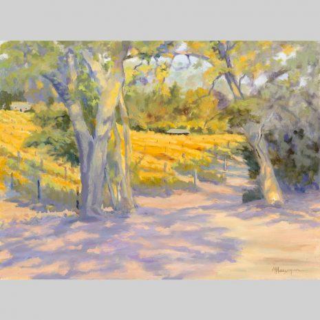 Vineyard Shadows 18x24